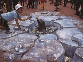 The Seal- Optical Illusion Chalk Drawing