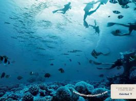 Club Med Scuba Divers Illusion