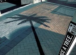Unexpected Shadow Illusion